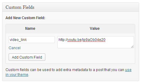 Video link in WordPress custom field
