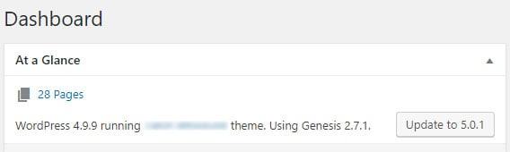 WordPress dashboard running 4.9.x but only giving 5.0.x update option