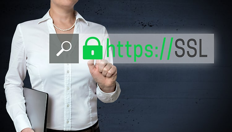 SSL Browser touchscreen is shown by businesswoman.